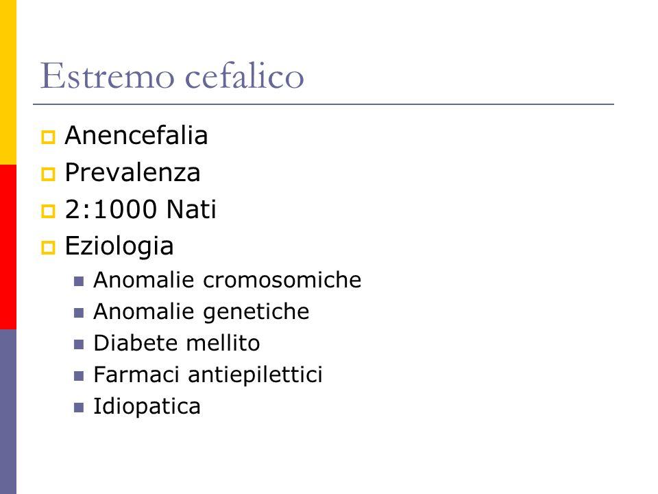 Estremo cefalico Anencefalia Prevalenza 2:1000 Nati Eziologia Anomalie cromosomiche Anomalie genetiche Diabete mellito Farmaci antiepilettici Idiopati