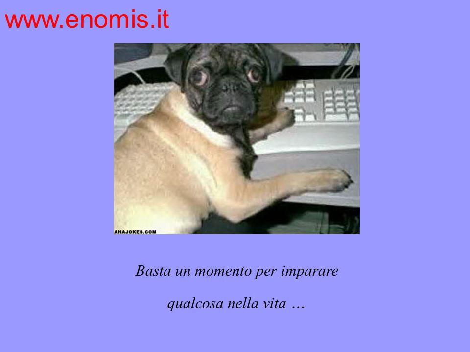 Basta un momento per imparare qualcosa nella vita … www.enomis.it