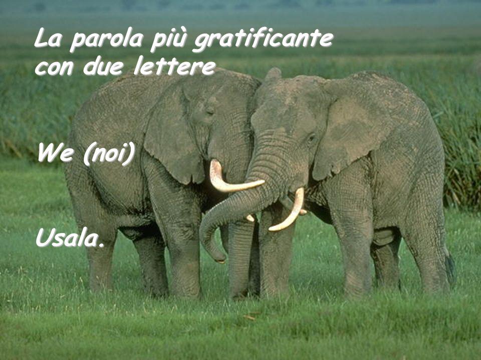La parola più gratificante con due lettere We (noi) Usala.