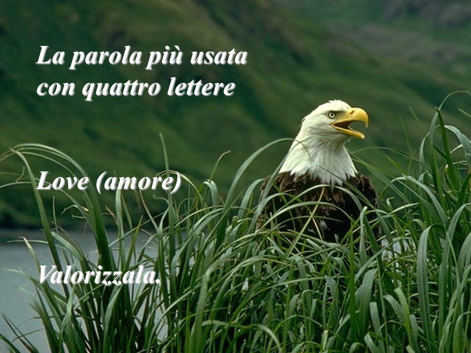 La parola più usata con quattro lettere Love (amore) Valorizzala.