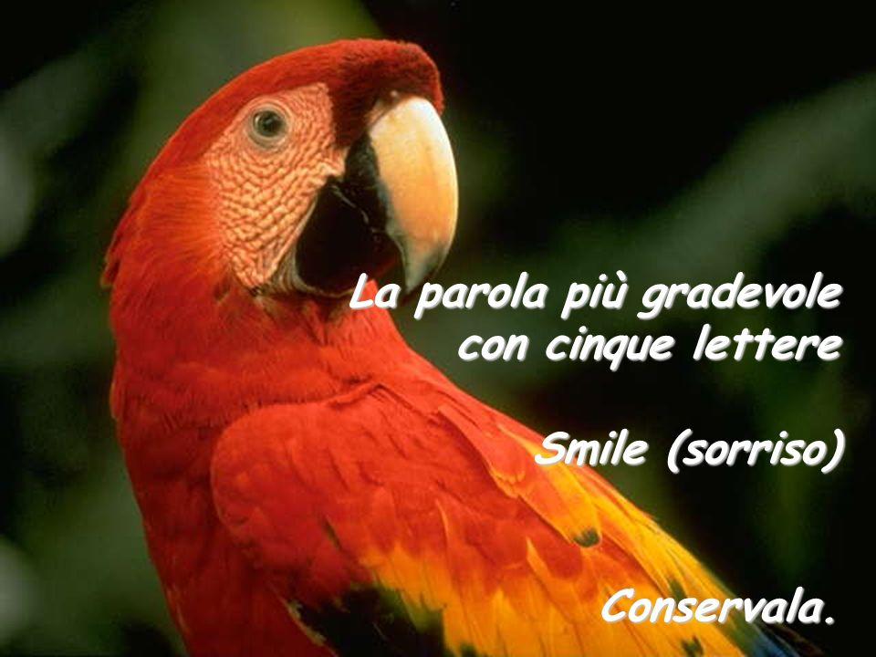 La parola più gradevole con cinque lettere Smile (sorriso) Conservala.