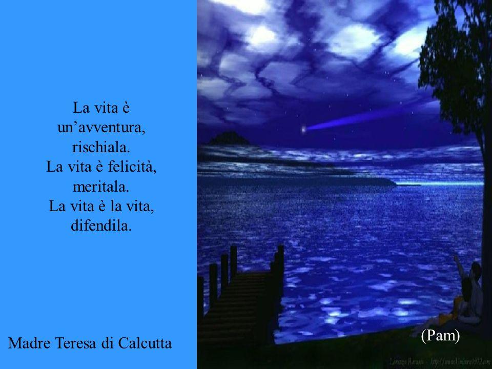 La vita è unavventura, rischiala. La vita è felicità, meritala. La vita è la vita, difendila. (Pam) Madre Teresa di Calcutta