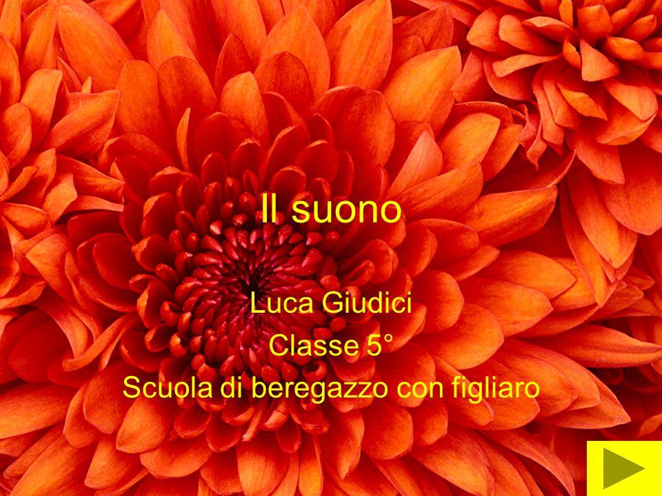 Il suono Luca Giudici Classe 5° Scuola di beregazzo con figliaro
