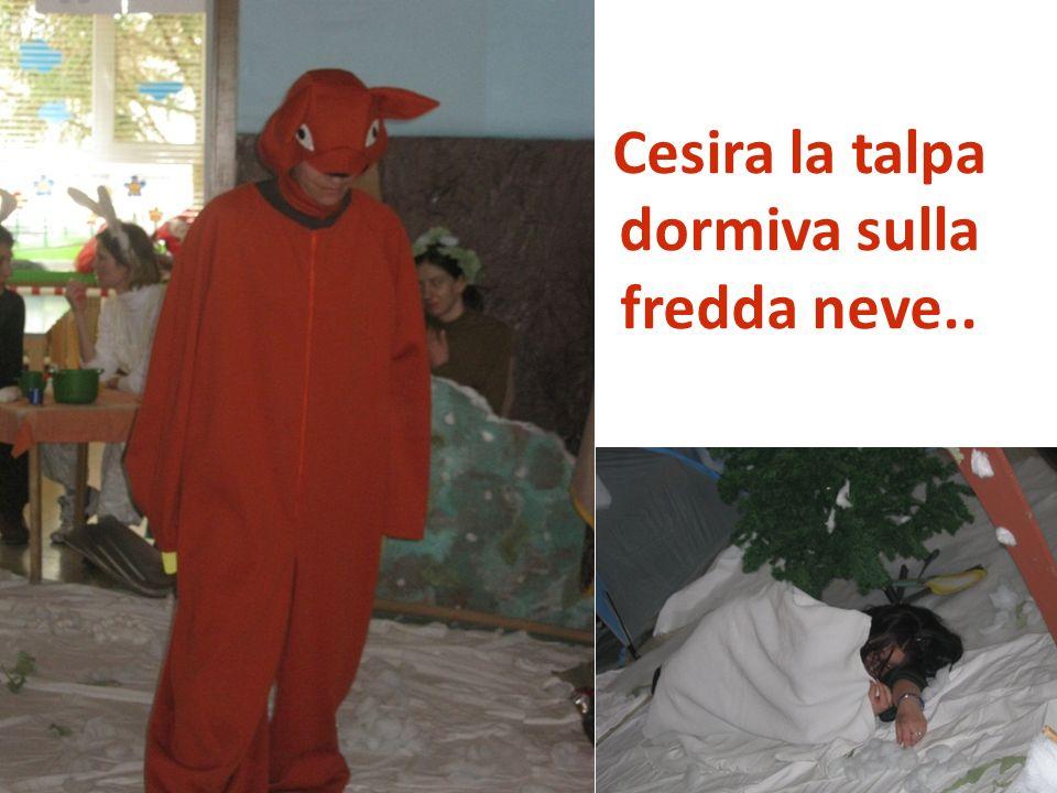 Intanto il papà e la mamma di talpa Cesira preoccupati la cercavano