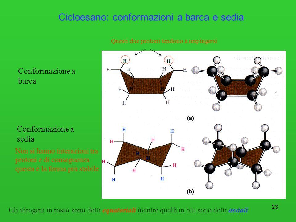 23 Cicloesano: conformazioni a barca e sedia Conformazione a barca Conformazione a sedia Questi due protoni tendono a respingersi Non si hanno interaz