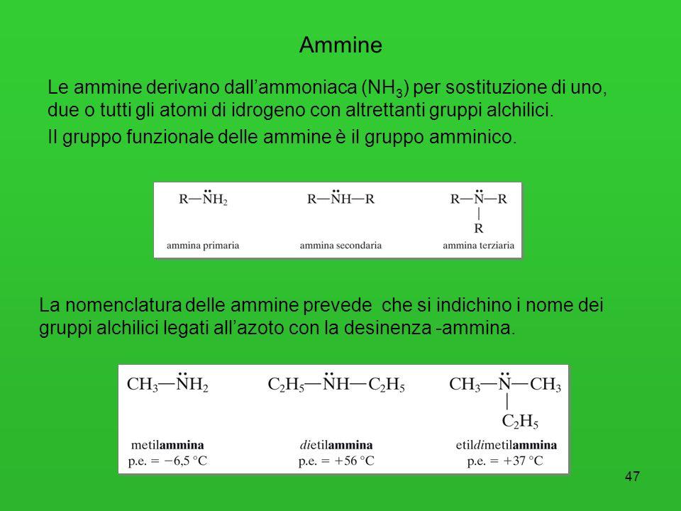 47 Le ammine derivano dallammoniaca (NH 3 ) per sostituzione di uno, due o tutti gli atomi di idrogeno con altrettanti gruppi alchilici. Il gruppo fun