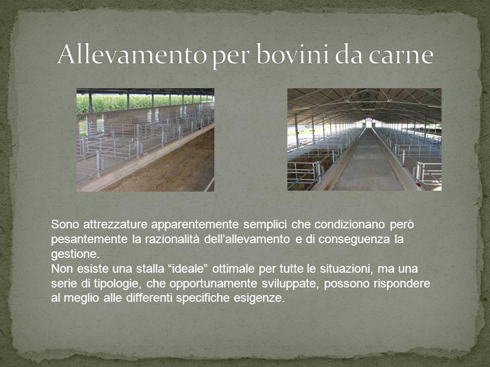Le attrezzature per questa tipologia di allevamento sono specificatamente studiate per consentire il contenimento degli animali evitandone ogni possib