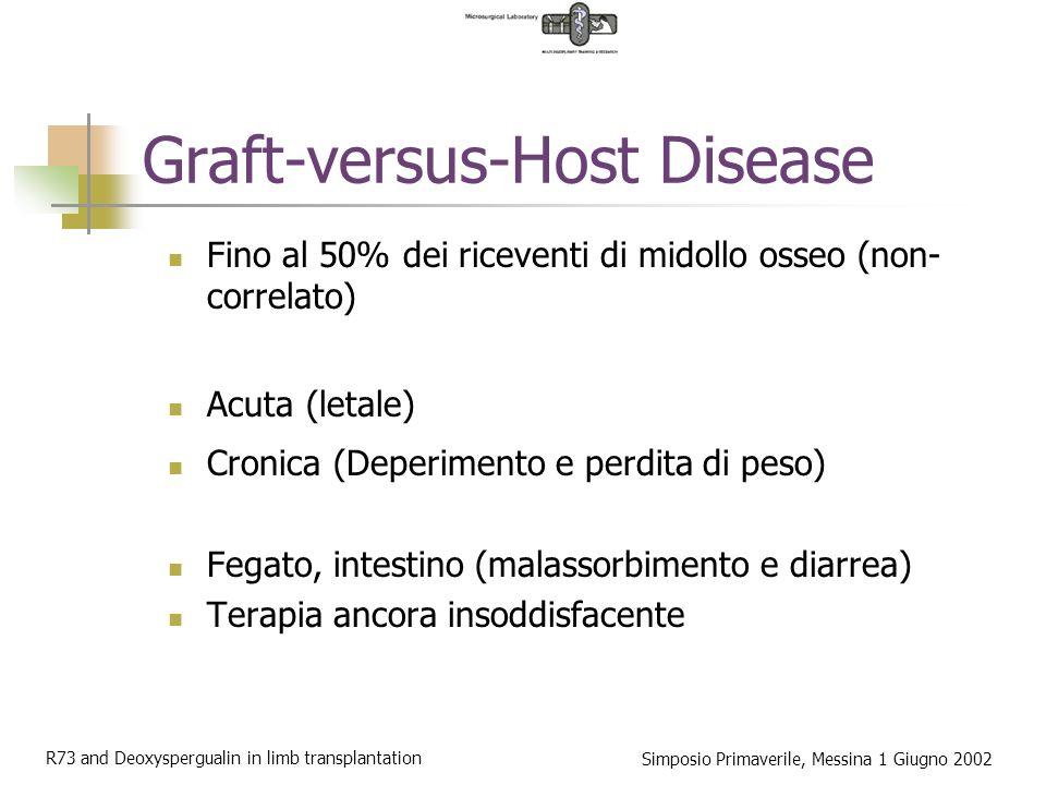 R73 and Deoxyspergualin in limb transplantation Simposio Primaverile, Messina 1 Giugno 2002 Modello sperimentale Arto inferiore del ratto .