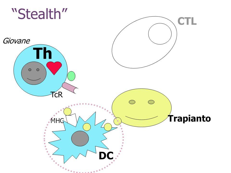Stealth Th TcR DC MHC Trapianto CTL Giovane