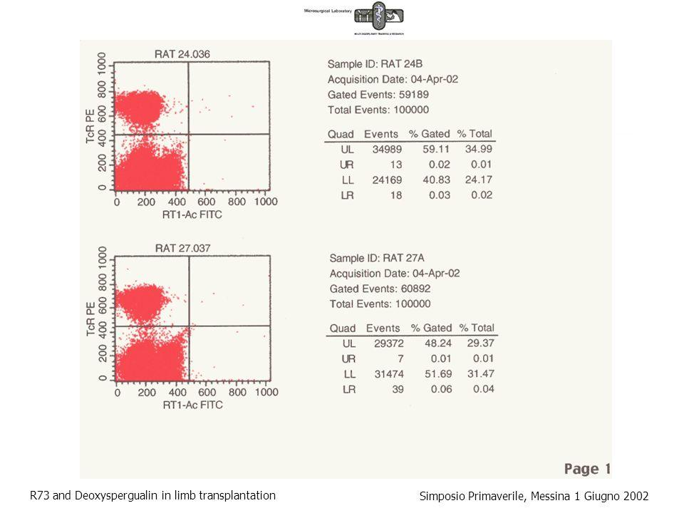 R73 and Deoxyspergualin in limb transplantation Simposio Primaverile, Messina 1 Giugno 2002 Anti-CD3 / Immuno Tossina T TcR CD3 IT