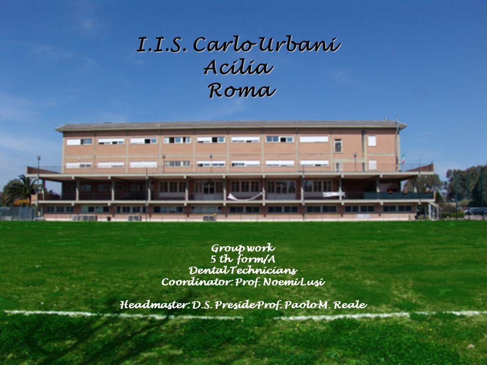 I.I.S.Carlo Urbani Acilia Roma Group work 5 th form/A Dental Technicians Coordinator: Prof.
