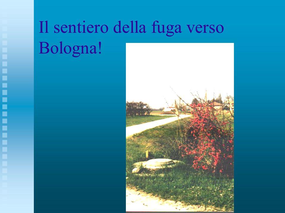 Il sentiero della fuga verso Bologna!