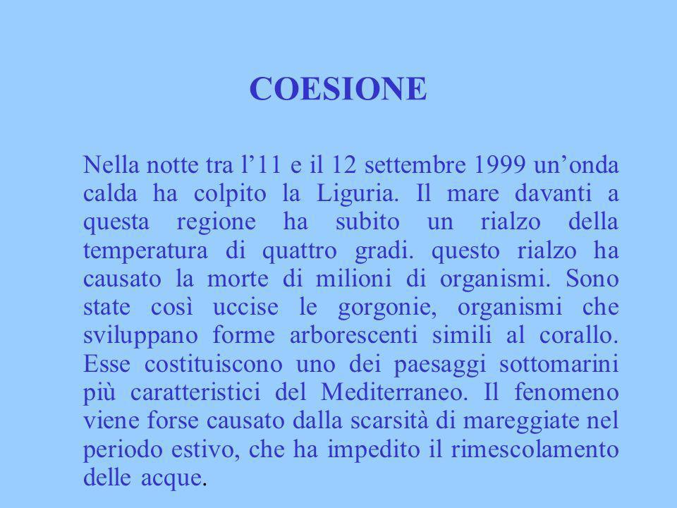 COESIONE Nella notte tra l11 e il 12 settembre 1999 unonda calda ha colpito la Liguria. Il mare davanti a questa regione ha subito un rialzo della tem