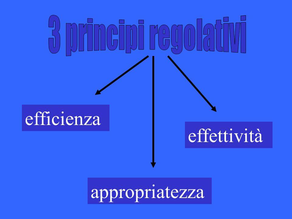 efficienza appropriatezza effettività