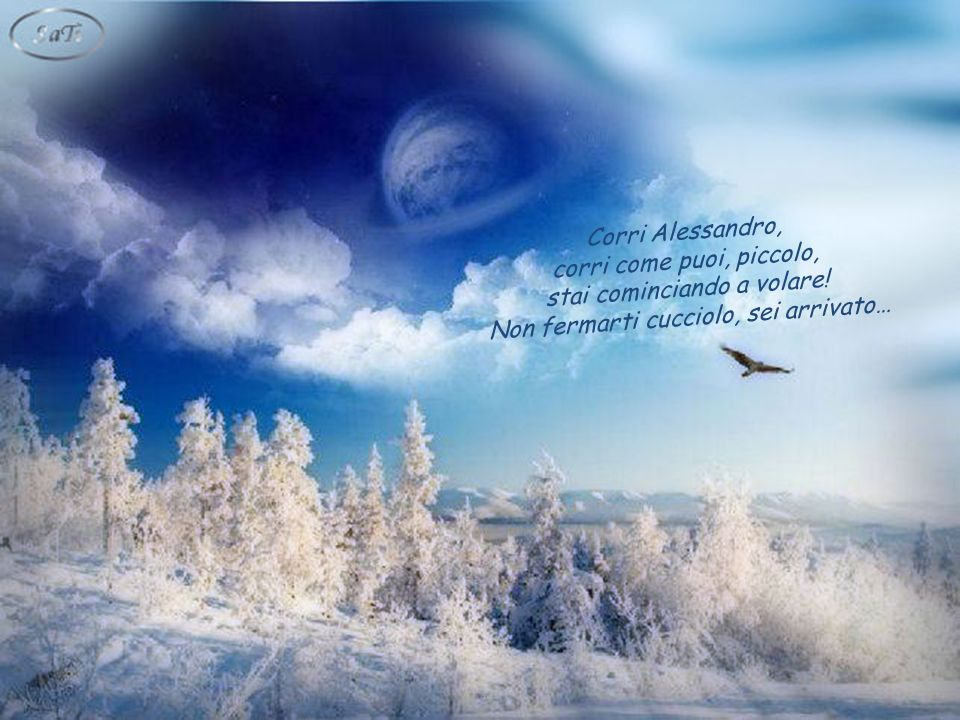 e tu, insieme agli altri piccoli angeli con le ali più fragili, sarete accolti proprio lì, accanto a Lui, per riposare un attimo, prima di ripartire alla conquista del mondo!