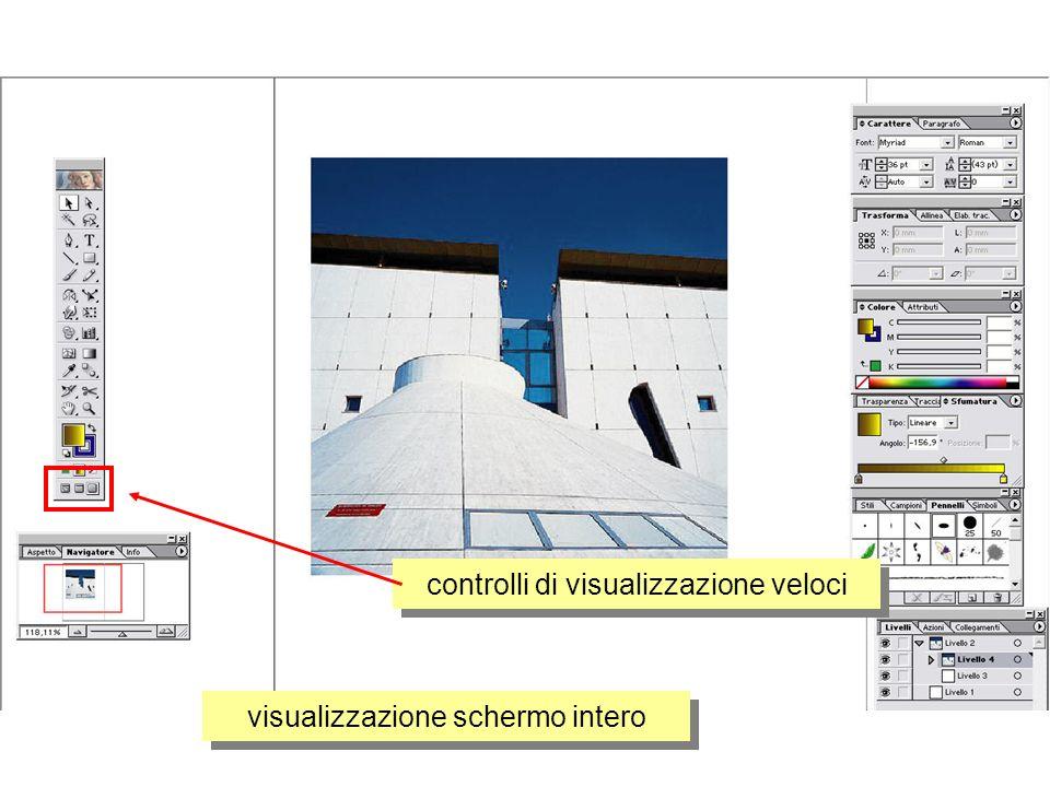 controlli di visualizzazione veloci visualizzazione schermo intero