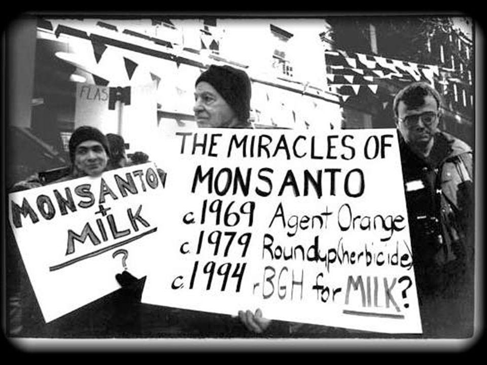 Il mio primo incontro con la Stevia avvenne casualmente nellanno 2000, mentre cercavo su Internet informazioni sulla Monsanto (multinazionale farmaceutica americana che controlla il 90% delle sementi transgeniche a livello planetario)
