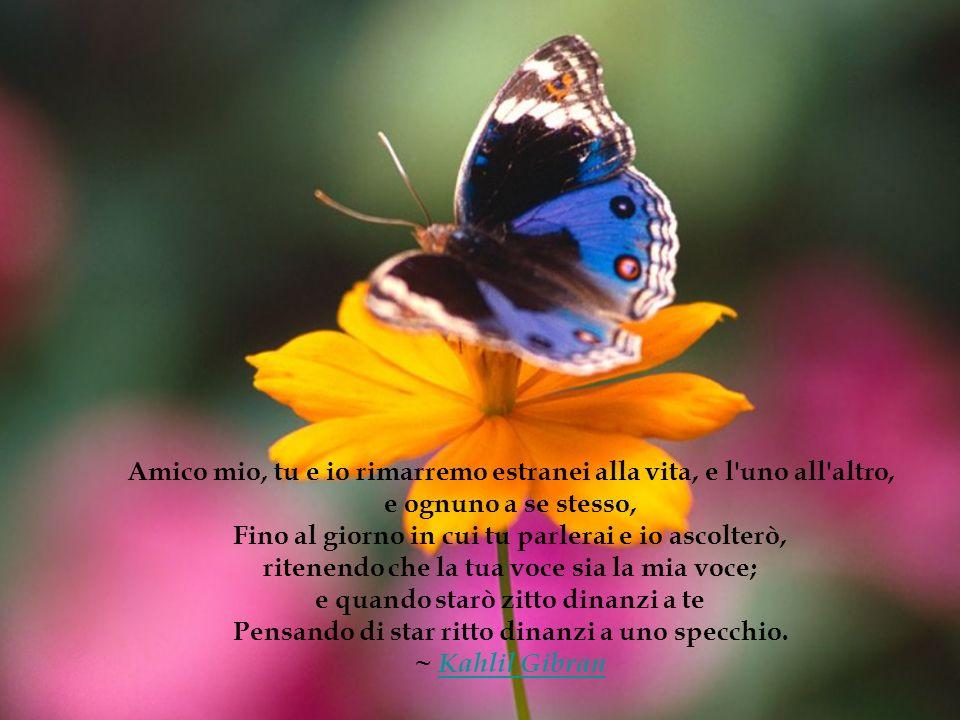 ...nella solitudine, nella malattia, nella confusione, la semplice conoscenza dell amicizia rende possibile resistere, anche se l amico non ha il potere di aiutarci.
