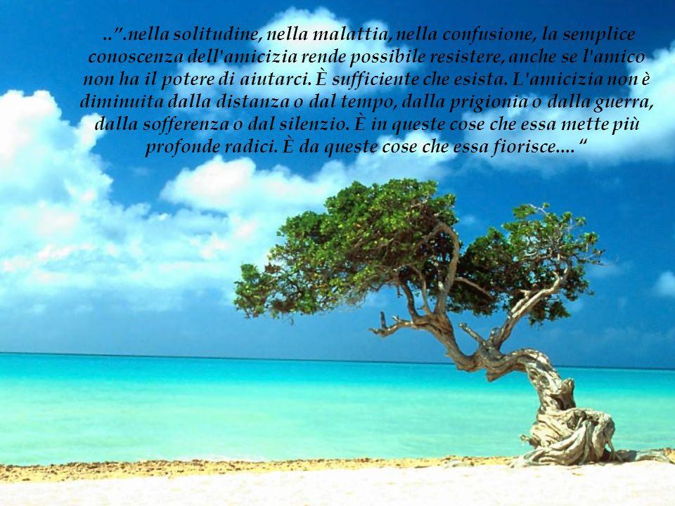 ...nella solitudine, nella malattia, nella confusione, la semplice conoscenza dell'amicizia rende possibile resistere, anche se l'amico non ha il pote