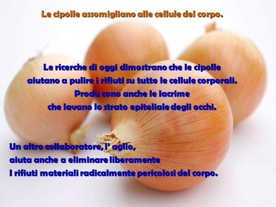 Larancia, il pompelmo e gli altri frutti citrici assomigliano alle ghiandole dei seni delle donne… Stimolano la salute dei seni e il movimento interno e esterno delle linfe, nei seni.