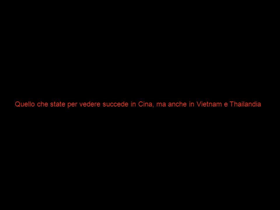 Quello che state per vedere succede in Cina, ma anche in Vietnam e Thailandia