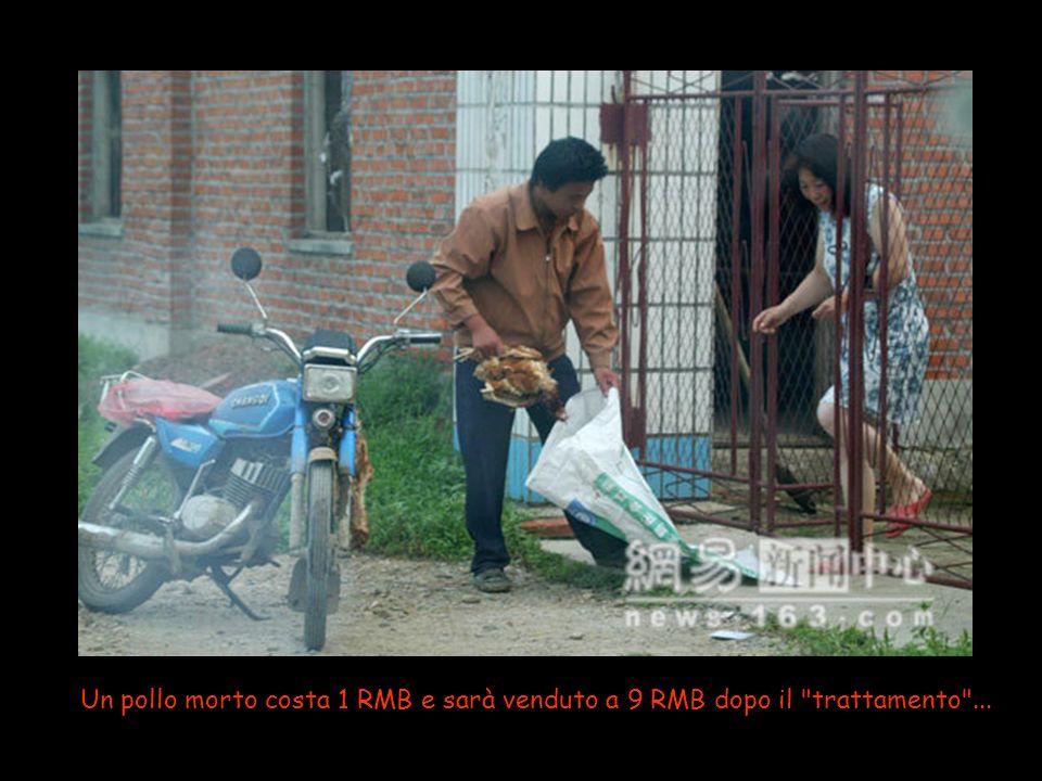 Un pollo morto costa 1 RMB e sarà venduto a 9 RMB dopo il trattamento ...