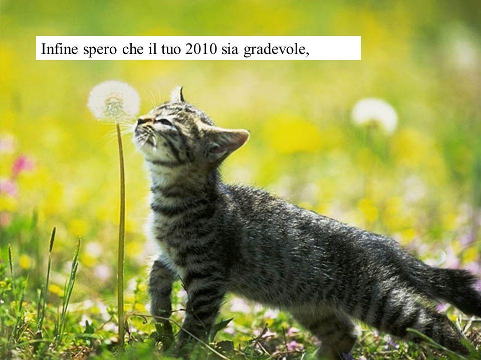 Infine spero che il tuo 2010 sia gradevole,