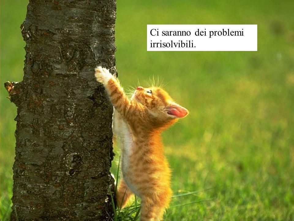 Ci saranno dei problemi irrisolvibili.