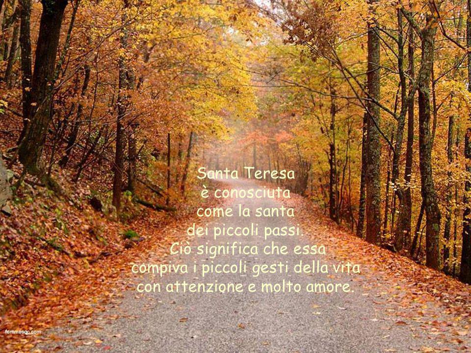 Carole F. 2006 Preghiera di Santa Teresa di Lisieux Ogni immagine ha un legame con le parole.