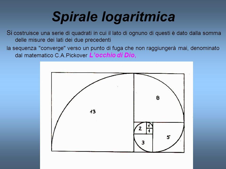 Spirale logaritmica Si costruisce una serie di quadrati in cui il lato di ognuno di questi è dato dalla somma delle misure dei lati dei due precedenti