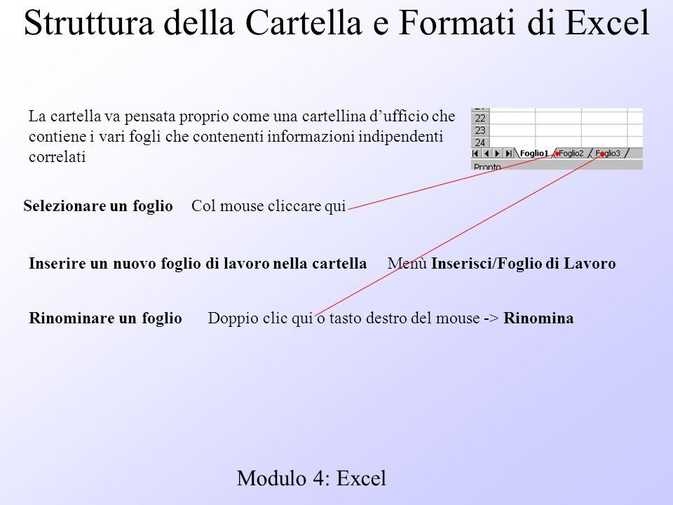 Modulo 4: Excel Struttura della Cartella e Formati di Excel La cartella va pensata proprio come una cartellina dufficio che contiene i vari fogli che