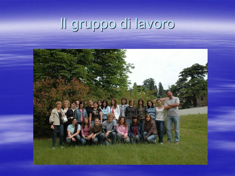 Il gruppo di lavoro