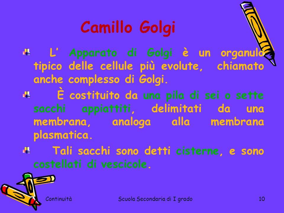 ContinuitàScuola Secondaria di I grado10 Camillo Golgi L Apparato di Golgi è un organulo tipico delle cellule più evolute, chiamato anche complesso di