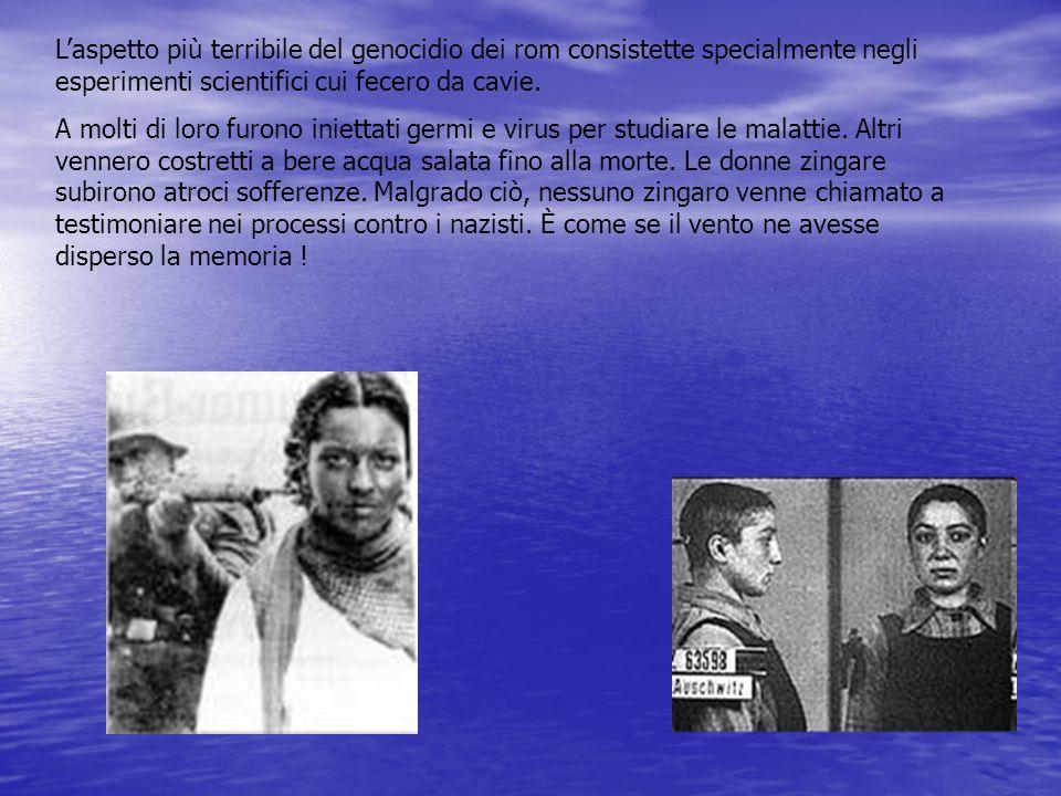 Laspetto più terribile del genocidio dei rom consistette specialmente negli esperimenti scientifici cui fecero da cavie. A molti di loro furono iniett