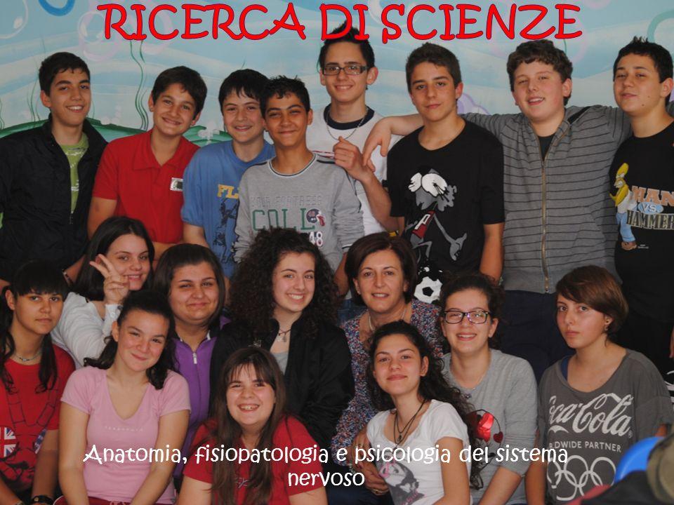Questo lavoro, svolto dagli alunni della classe III A della Scuola Secondaria di I grado di San Cassiano, nasce dalla curiosità emersa durante lo studio del sistema nervoso centrale nelle ore di scienze.