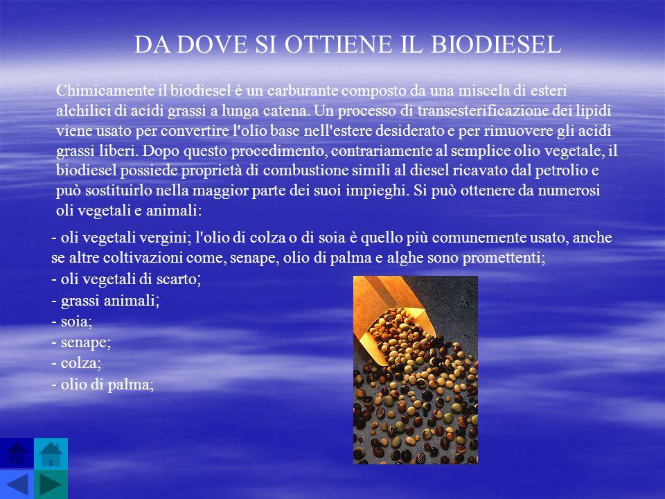 DA DOVE SI OTTIENE IL BIODIESEL Chimicamente il biodiesel è un carburante composto da una miscela di esteri alchilici di acidi grassi a lunga catena.