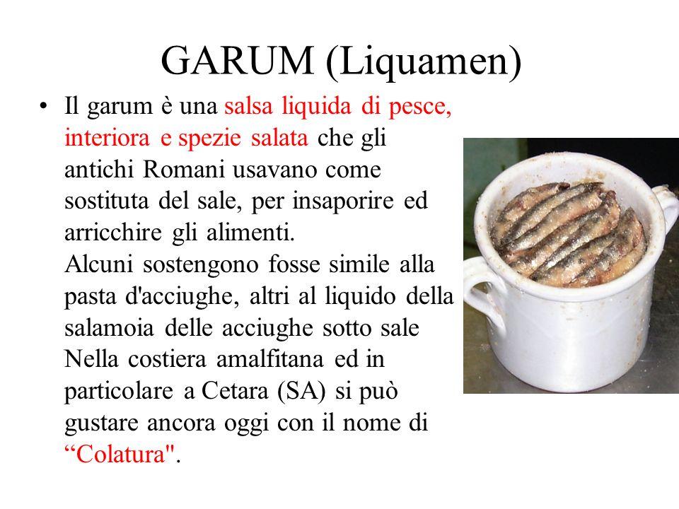 GARUM (Liquamen) Il garum è una salsa liquida di pesce, interiora e spezie salata che gli antichi Romani usavano come sostituta del sale, per insapori