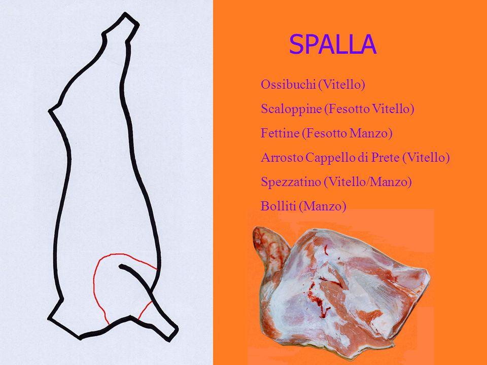 SPALLA Ossibuchi (Vitello) Scaloppine (Fesotto Vitello) Fettine (Fesotto Manzo) Arrosto Cappello di Prete (Vitello) Spezzatino (Vitello/Manzo) Bolliti