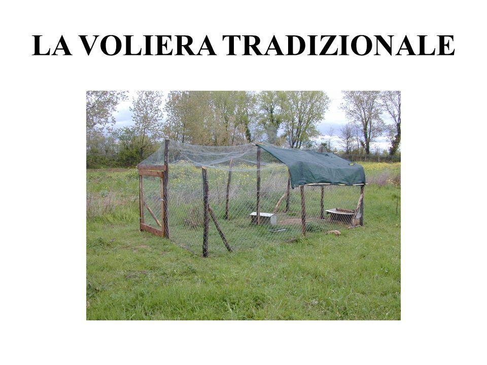 LA VOLIERA TRADIZIONALE