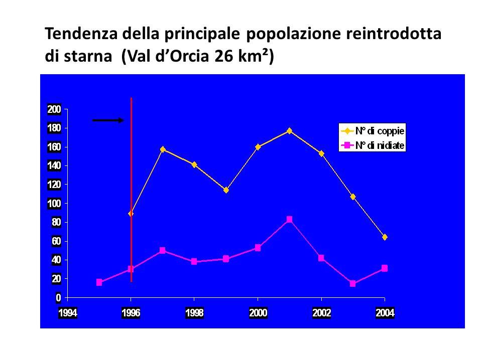 Tendenza della principale popolazione reintrodotta di starna (Val dOrcia 26 km²)
