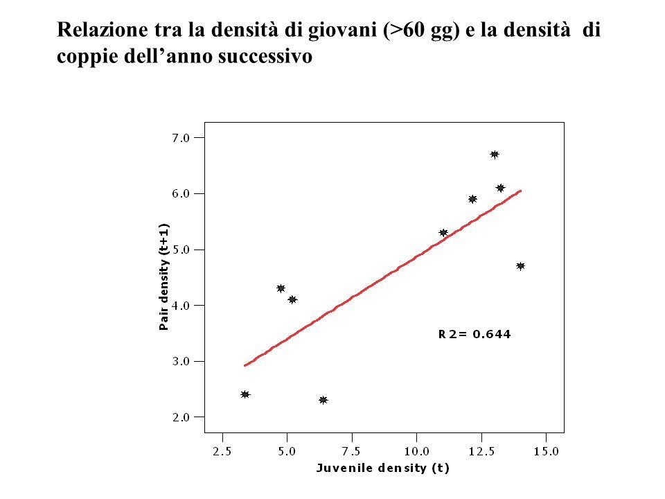 Relazione tra la densità di giovani (>60 gg) e la densità di coppie dellanno successivo