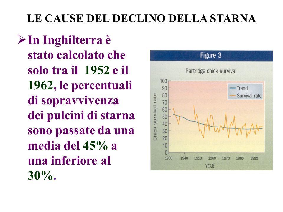 LE CAUSE DEL DECLINO DELLA STARNA In Inghilterra è stato calcolato che solo tra il 1952 e il 1962, le percentuali di sopravvivenza dei pulcini di starna sono passate da una media del 45% a una inferiore al 30%.