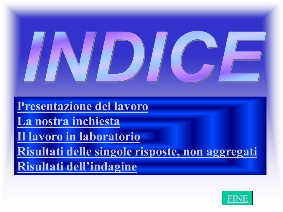 Presentazione del lavoro La nostra inchiesta Il lavoro in laboratorio Risultati delle singole risposte, non aggregati Risultati dellindagine I N D I C