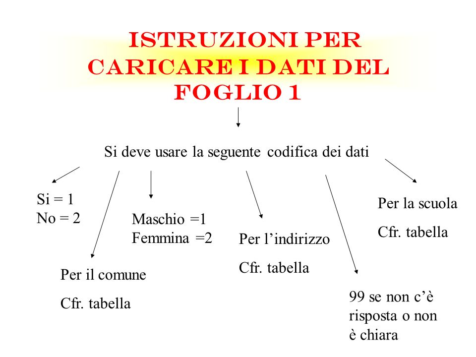 ISTRUZIONI PER CARICARE I DATI DEL FOGLIO 1 Si deve usare la seguente codifica dei dati Si = 1 No = 2 Maschio =1 Femmina =2 Per lindirizzo Cfr. tabell