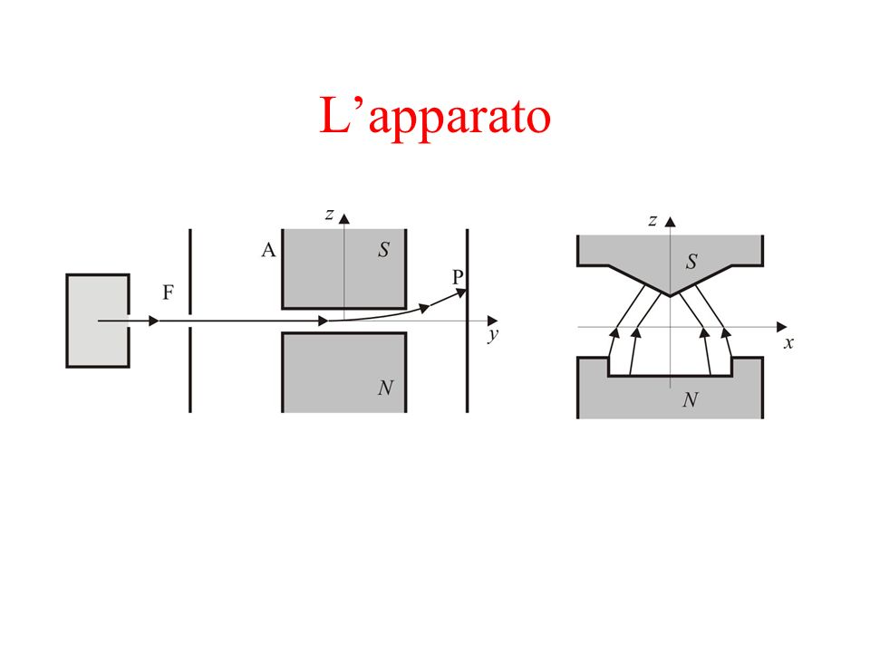 Lapparato