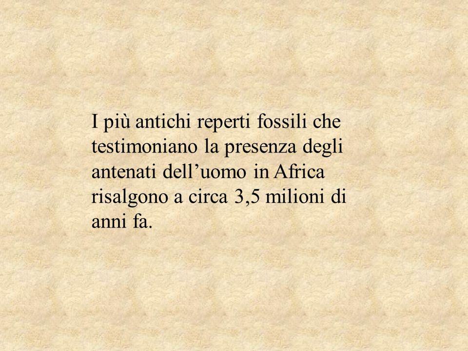 I più antichi reperti fossili che testimoniano la presenza degli antenati delluomo in Africa risalgono a circa 3,5 milioni di anni fa.