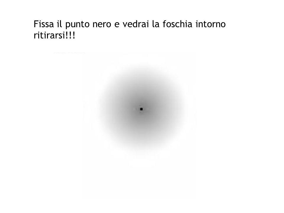 Fissa il punto nero e vedrai la foschia intorno ritirarsi!!!