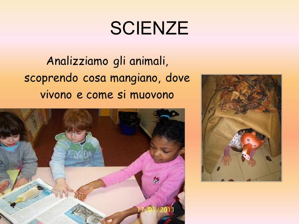 SCIENZE Analizziamo gli animali, scoprendo cosa mangiano, dove vivono e come si muovono