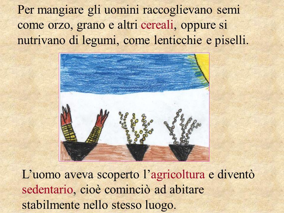 Per mangiare gli uomini raccoglievano semi come orzo, grano e altri cereali, oppure si nutrivano di legumi, come lenticchie e piselli. Luomo aveva sco