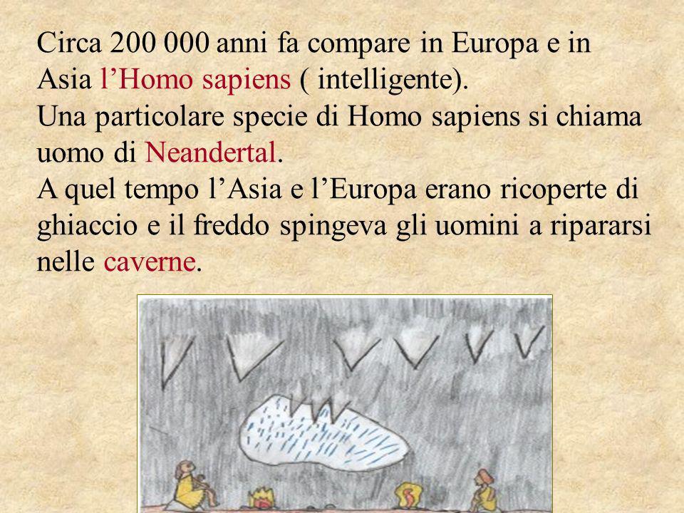 Circa 200 000 anni fa compare in Europa e in Asia lHomo sapiens ( intelligente). Una particolare specie di Homo sapiens si chiama uomo di Neandertal.